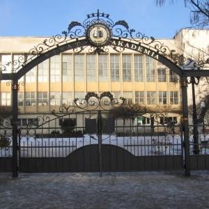 Ковані парадні ворота